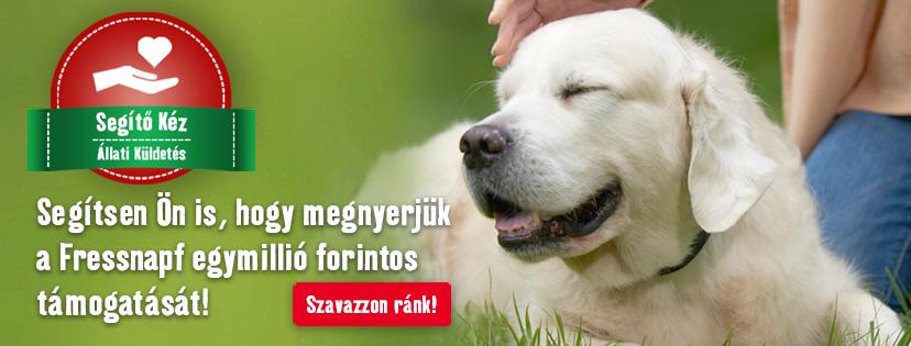 freshnapf kutyavalegymosolyert