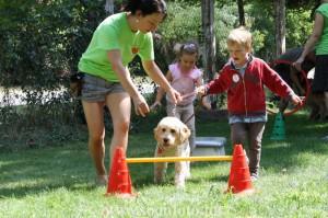 kutyasterapiahiros0064